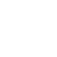 cardiovascular 03