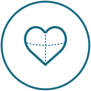 cardiovascular 01